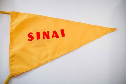 Picture of NS Team Flag