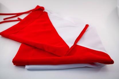 Picture of Semaphore Flag